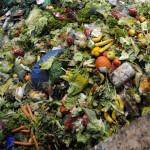 Europe : Un aliment sur deux finit sa course dans une poubelle