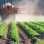 France and Europe : Hesitantly policy on pesticides