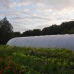 La ferme du Mazeau : permaculture en action