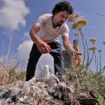 Pier Giorgio Parini, le chef des herbes