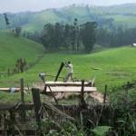 Le Kivu n'est pas qu'un conflit, c'est aussi un fromage réputé