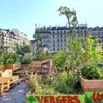 Le citoyen, moteur de la politique verte de Paris
