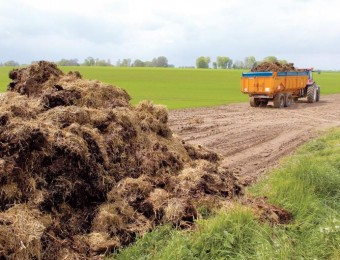 agriculture-merdier