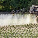 Le gouvernement détaille son plan «Ecophyto 2″