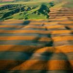 L'agriculture, un atout pour le climat?
