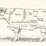 Quelle place pour la viande ? Sur la planète ? Dans l'assiette?