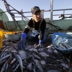 Pêcheur à Fukushima