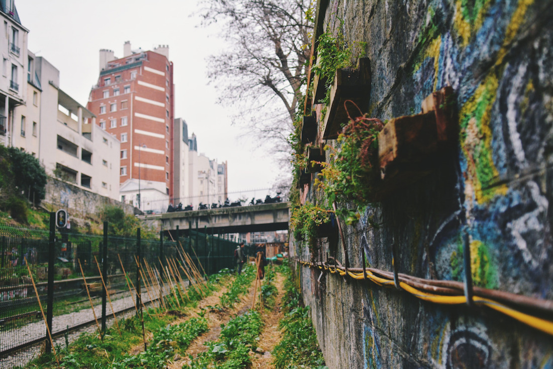 """Résultat de recherche d'images pour """"48 h agriculture urbaine"""""""