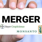Le prix de Monsanto ? 62 milliards selon Bayer