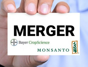 merger-company-monsanto-bayer-735-350