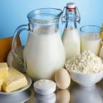 Quand des agriculteurs décident de court-circuiter les laiteries