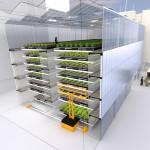 «Usine à végétaux» en milieu urbain : un prototype dévoilé à Lyon