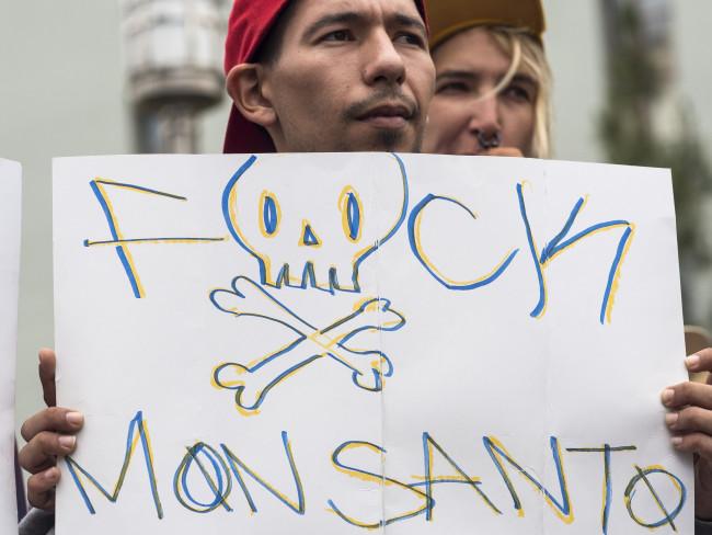 Un militant contre Monsanto