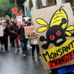 Civil society fights Monsanto