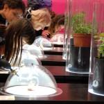 Le Salon de la qualité alimentaire : version XXL