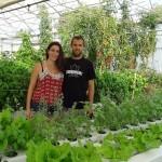 Marion et Nicolas: le goût de l'hydroponie