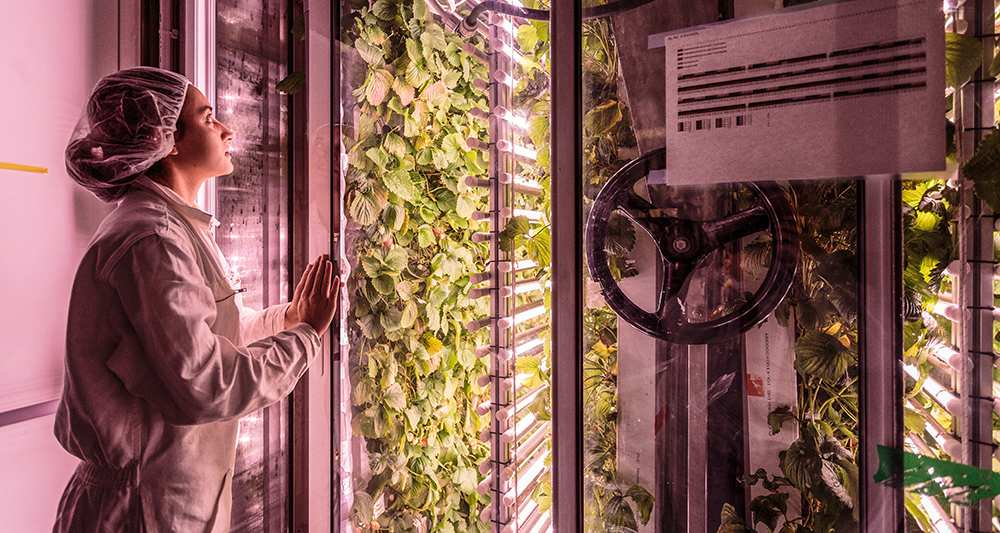 The start-ups set to revolutionize agriculture