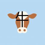 En Chine, 56 fermes sont déjà passées aux 10.000 vaches