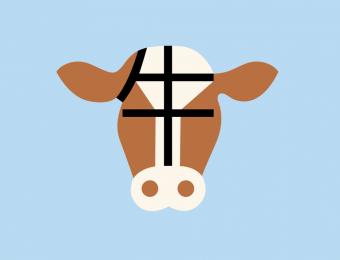 Graphisme d'une vache en Chine