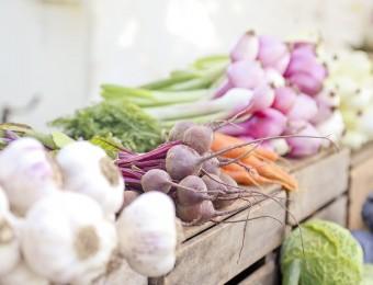 europe-manque-legume