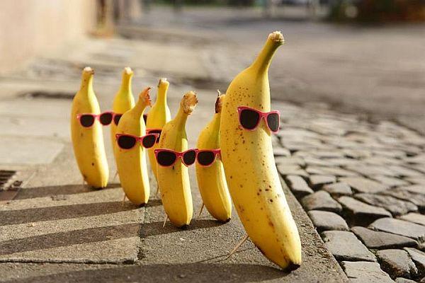 Bananes à lunettes
