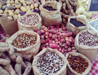 Politiques du goût : la ferme O'Vr