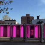Contre la malbouffe, l'agriculture urbaine fleurit à New York