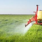 Pesticides and… the State of Food