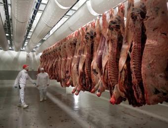 viande industrielle