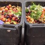Gaspillage alimentaire: la restauration collective dans le viseur