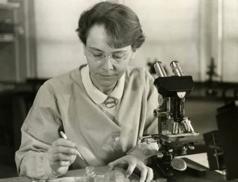 Dr. Barbara McClintock in laboratory