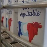 Dismantling the bricks of the dairy crisis with fair-trade milk