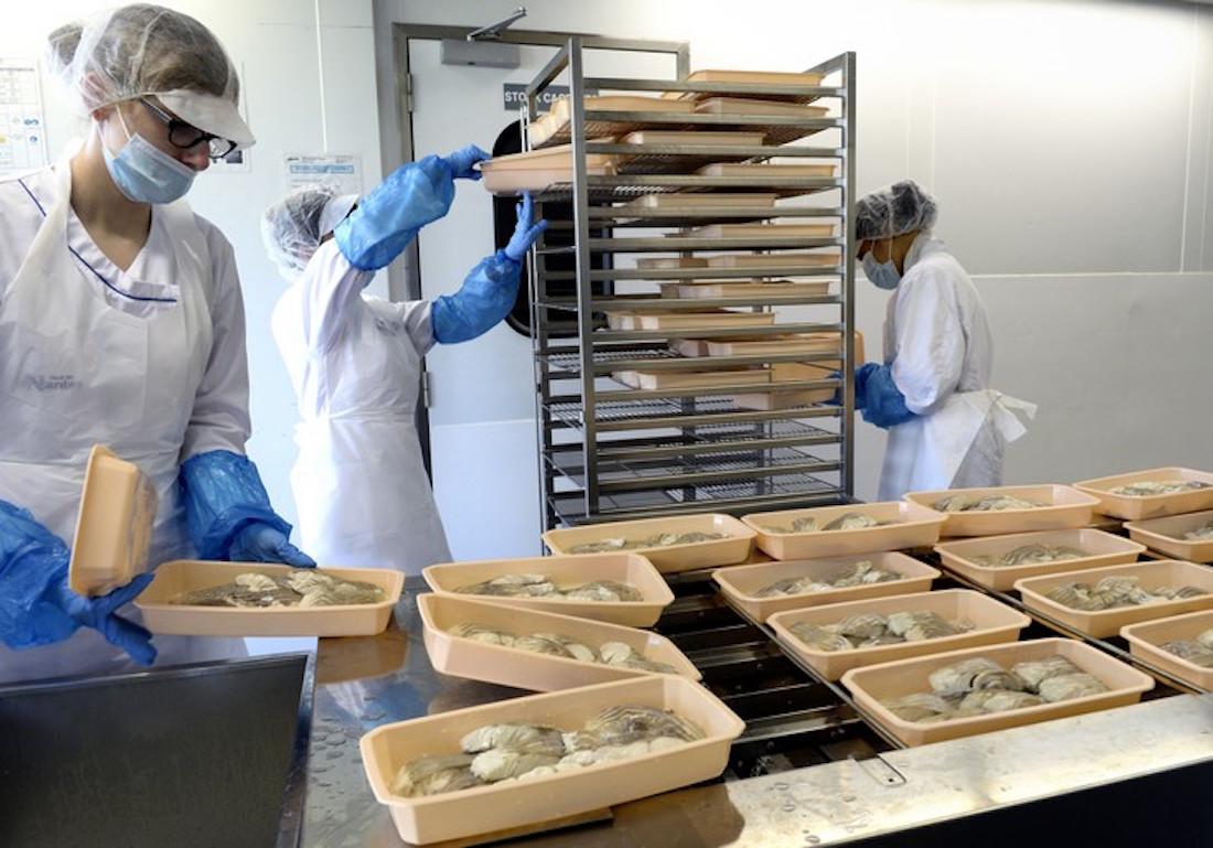 Atelier De La Cuisine Nantes au cœur de la cuisine centrale de nantes - alimentation générale